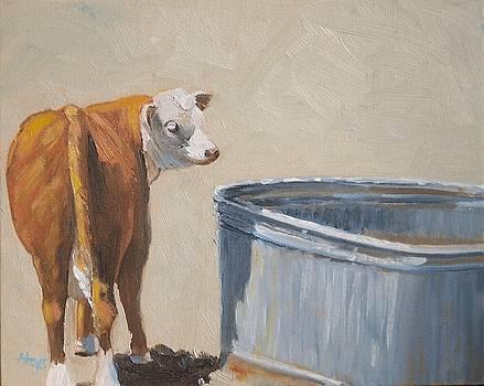 Calf by Donna Hays