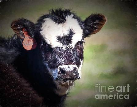 Calf Number 444 by Laurinda Bowling