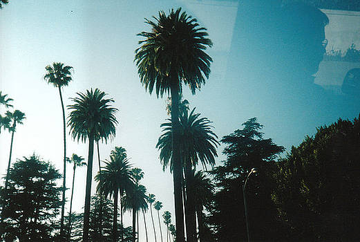 Cali Times A Look Out the Window by Sabirah Lewis