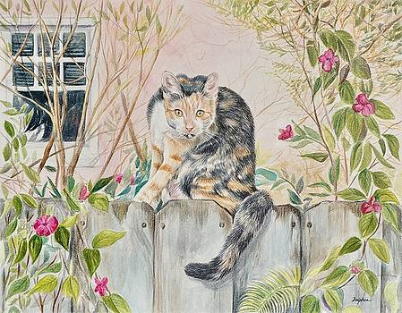 Calico Cat by Gail Dolphin