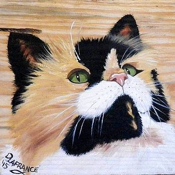 Calico Cat on Wood by Debbie LaFrance