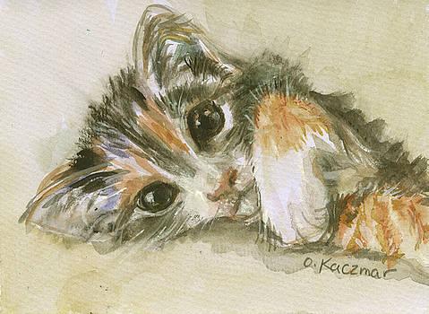 Olga Kaczmar - Calico Kitten