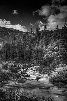 Bruce Bottomley - Calif/Nevada Stream
