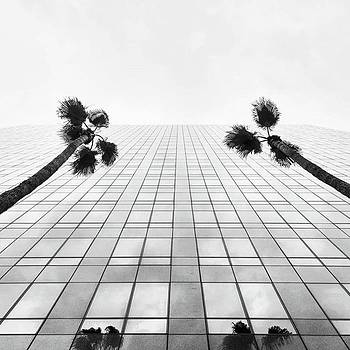 California Bank And Trust With The by Sean Kalimi