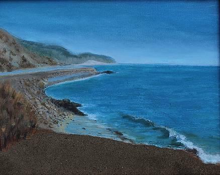 California Coast by Barbara Joyce