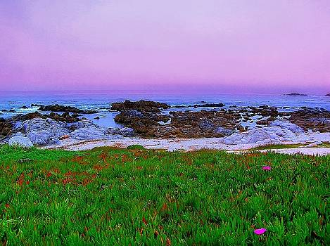 California Coast by Jen White