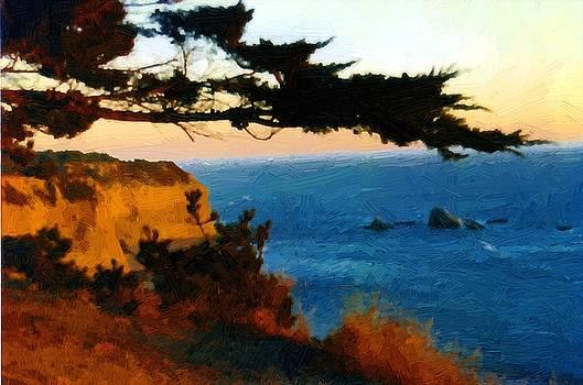 California Coast by John Ellis