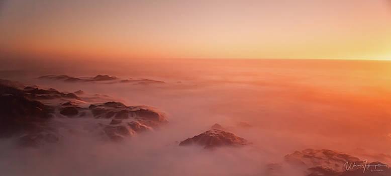 California Coast Landscape - 8440,S by Wally Hampton