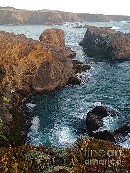 California Coast Mendocino by Gregory Dyer