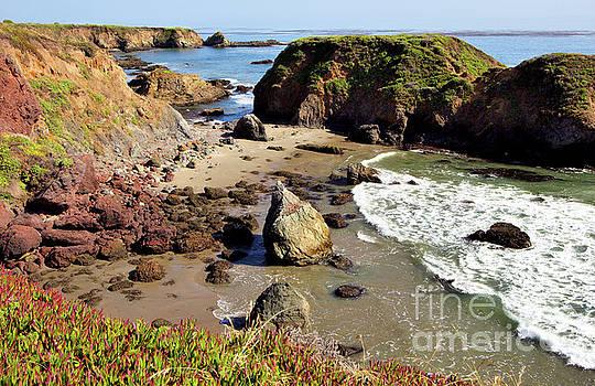 Dan Carmichael - California Coast Rocks Cliffs Iceplant