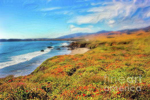 Dan Carmichael - California Coast Wildflowers on Cliffs AP