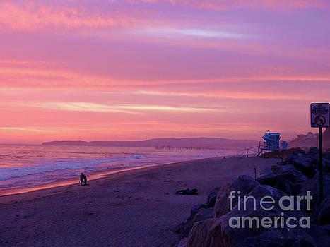 California Coastline by Robert Ball