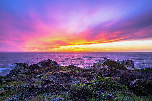 California Dreaming by Sean Ramsey