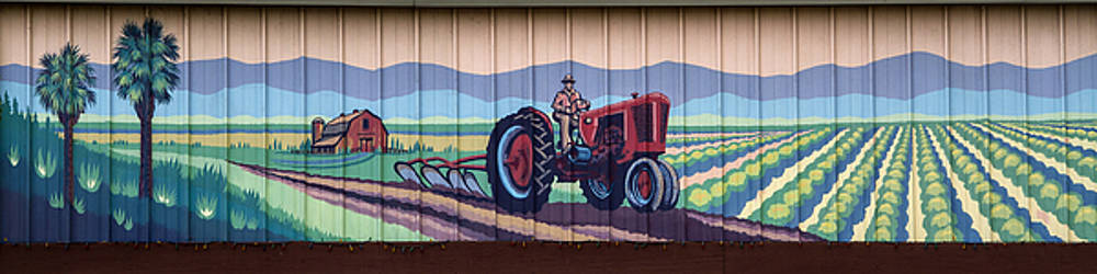 Guy Shultz - California Farmer