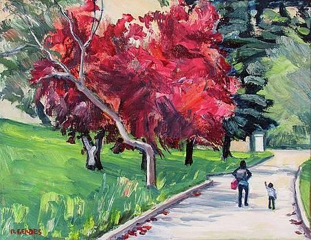 Walk with Me by Robert Gerdes