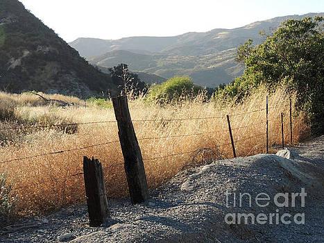 California Hiking by Robert Ball