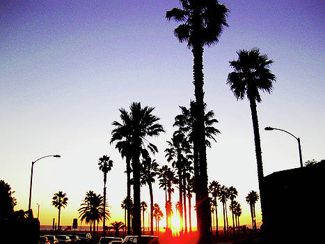California I by Aurica Voss