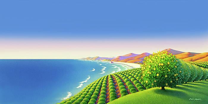 Lemon Orchard Panorama by Robin Moline