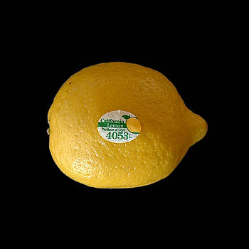 Stan  Magnan - California Lemon