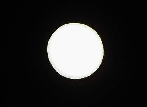 Elizabeth Hoskinson - California Moon