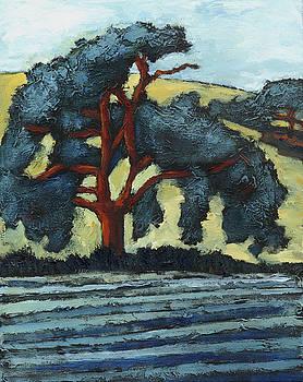 California Oak by Susan Adame