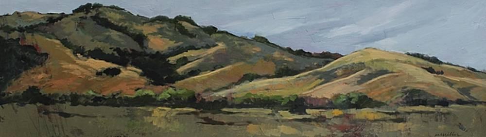 California panorama by Maralyn Miller