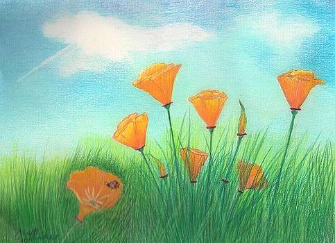 California Poppies by Janet Hinshaw