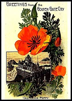 Peter Gumaer Ogden - California Poppy and Cliff House San Francisco 1910