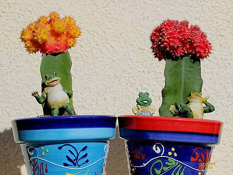 Gary Canant - California Potted Plants