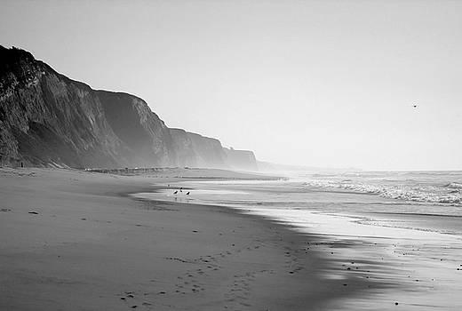 Kimberly Blom-Roemer - California Shoreline