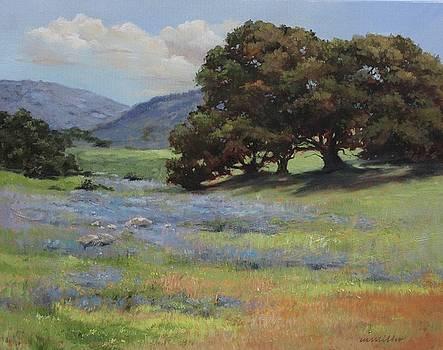 California Spring by Maralyn Miller