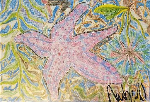 California Star Fish by Amber Waltmann