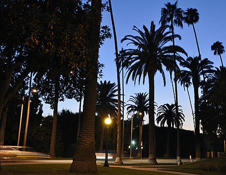 California Streets by Jennifer Ferrier