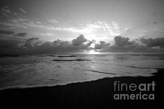 Tranquil Tide  by John F Tsumas