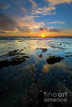 Mike Dawson - California Tidepool Sunset