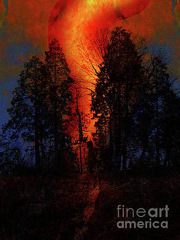 California Wildfire by Robert Ball
