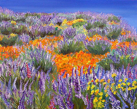Mary Jo Zorad - California Wildflowers