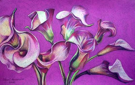 Calla Flowers by Chifan Catalin  Alexandru