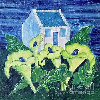 Caroline Street - Calla Lily Garden