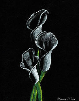 Callas Lilies by Lonnie Niver