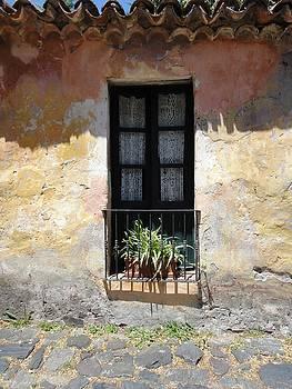 Calle de los Suspiros by Shana Sanborn