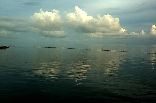 Kathi Shotwell - Calm - Florida Keys
