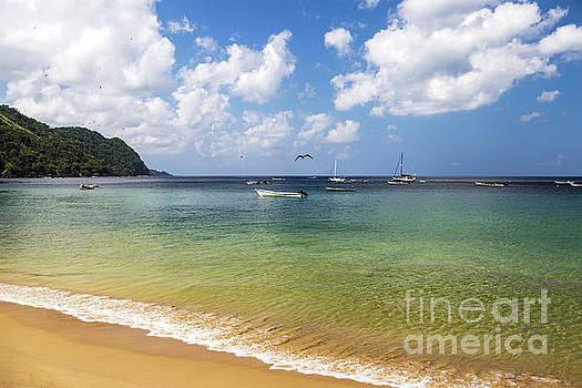 Calm Castara Beach by Hugh Stickney