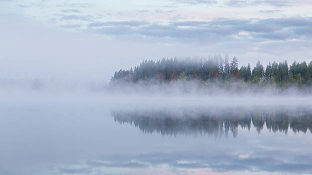 Calm foggy lake scape summer night by Juhani Viitanen