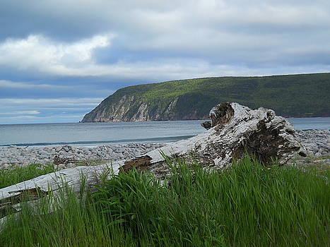 Calm of Cape Breton by Jeff Moose