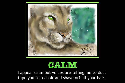Calm poster by Darren Cannell