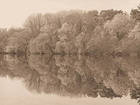 Calm Waters by Don Pettengill