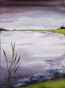 Calmer Water by Carolyn Doe
