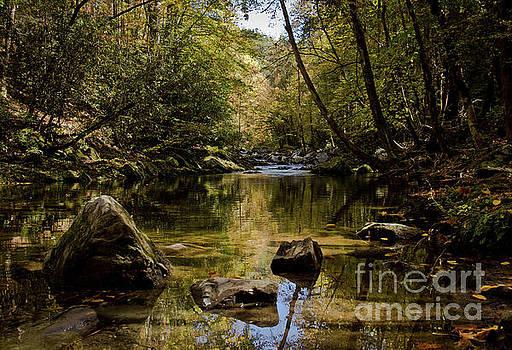 Calmer Water by Douglas Stucky