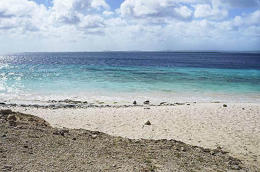 Ellie Teramoto - Ocean Beach Abstract